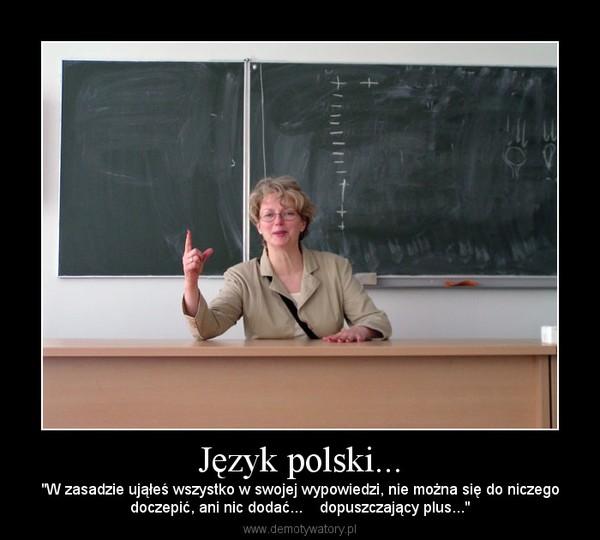 """Język polski... – """"W zasadzie ująłeś wszystko w swojej wypowiedzi, nie można się do niczegodoczepić, ani nic dodać...    dopuszczający plus..."""""""