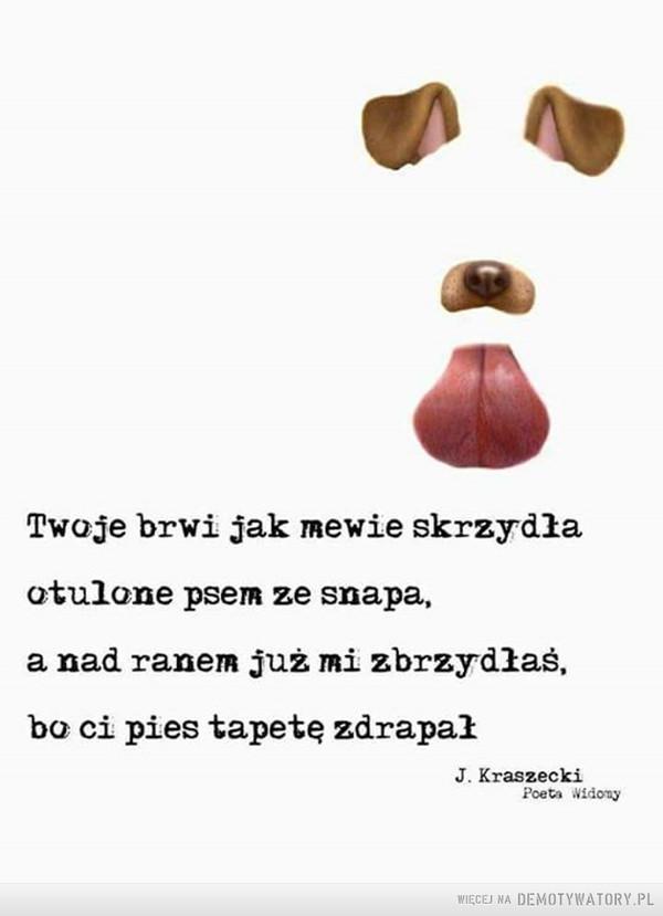Współczesna poezja –