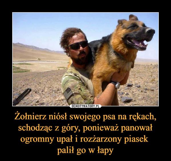 Żołnierz niósł swojego psa na rękach, schodząc z góry, ponieważ panował ogromny upał i rozżarzony piasek palił go w łapy –