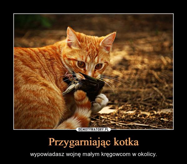 Przygarniając kotka – wypowiadasz wojnę małym kręgowcom w okolicy.