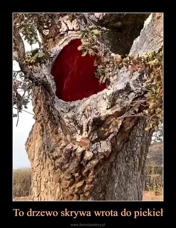 To drzewo skrywa wrota do piekieł –
