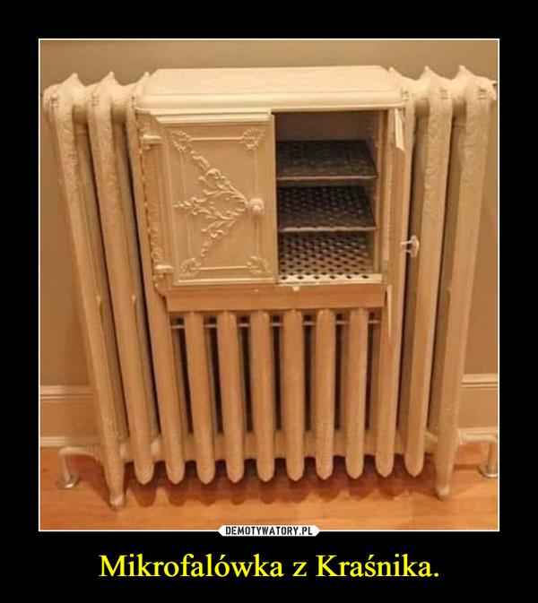 Mikrofalówka z Kraśnika. –
