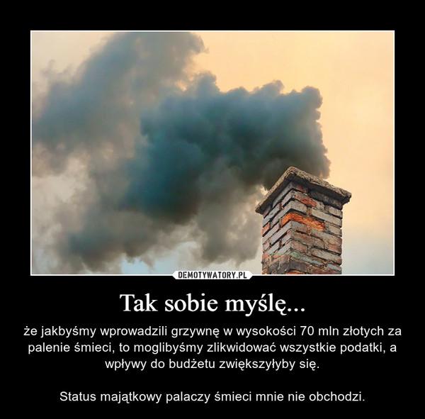 Tak sobie myślę... – że jakbyśmy wprowadzili grzywnę w wysokości 70 mln złotych za palenie śmieci, to moglibyśmy zlikwidować wszystkie podatki, a wpływy do budżetu zwiększyłyby się.Status majątkowy palaczy śmieci mnie nie obchodzi.