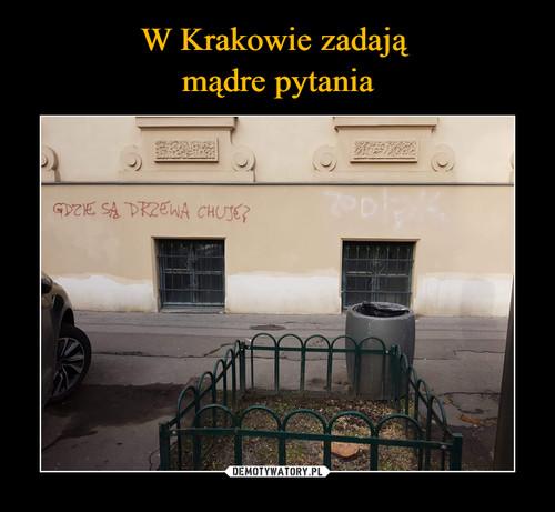 W Krakowie zadają  mądre pytania