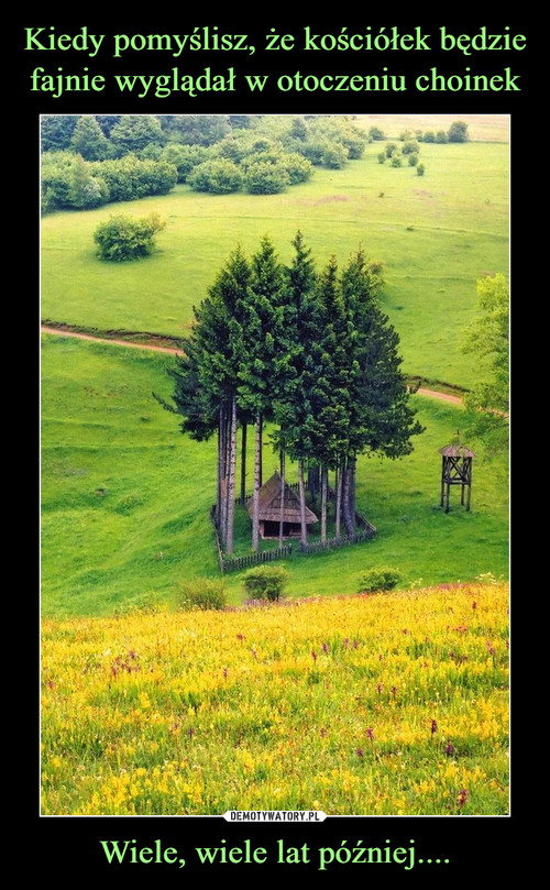 Kiedy pomyślisz, że kościółek będzie fajnie wyglądał w otoczeniu choinek Wiele, wiele lat później....
