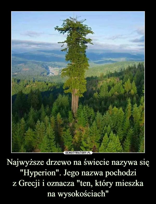 """Najwyższe drzewo na świecie nazywa się """"Hyperion"""". Jego nazwa pochodziz Grecji i oznacza """"ten, który mieszkana wysokościach"""" –"""