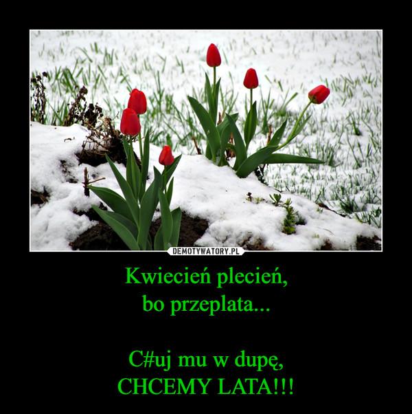 Kwiecień plecień,bo przeplata...C#uj mu w dupę,CHCEMY LATA!!! –