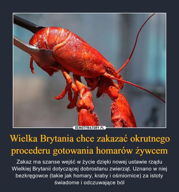 Wielka Brytania chce zakazać okrutnego procederu gotowania homarów żywcem – Zakaz ma szanse wejść w życie dzięki nowej ustawie rządu Wielkiej Brytanii dotyczącej dobrostanu zwierząt. Uznano w niej bezkręgowce (takie jak homary, kraby i ośmiornice) za istoty świadome i odczuwające ból