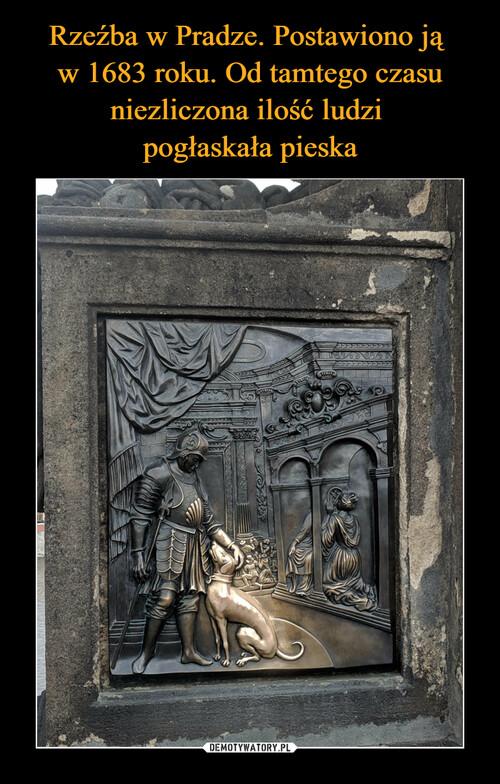 Rzeźba w Pradze. Postawiono ją  w 1683 roku. Od tamtego czasu niezliczona ilość ludzi  pogłaskała pieska