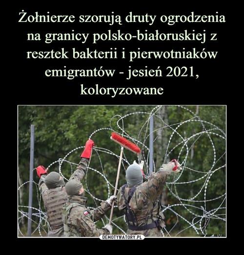 Żołnierze szorują druty ogrodzenia na granicy polsko-białoruskiej z resztek bakterii i pierwotniaków emigrantów - jesień 2021, koloryzowane