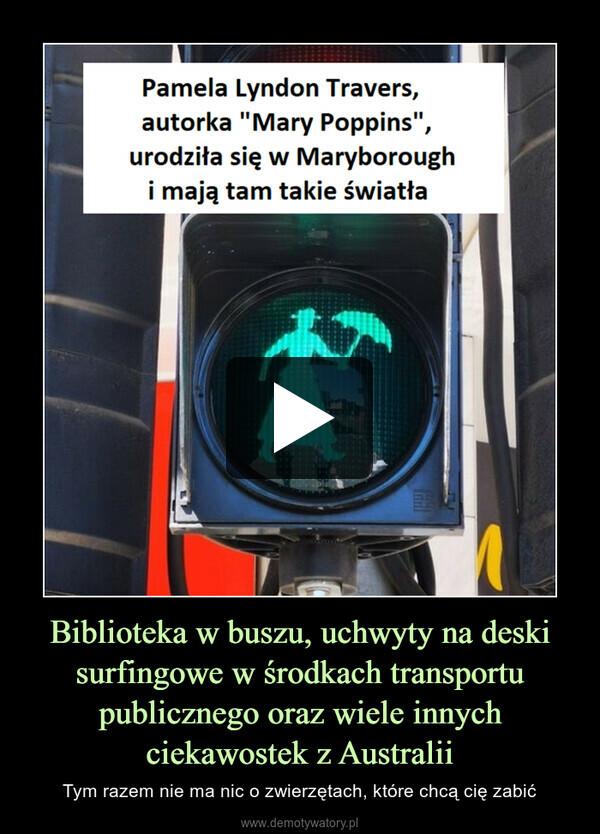 Biblioteka w buszu, uchwyty na deski surfingowe w środkach transportu publicznego oraz wiele innych ciekawostek z Australii – Tym razem nie ma nic o zwierzętach, które chcą cię zabić