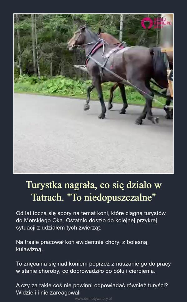 """Turystka nagrała, co się działo w Tatrach. """"To niedopuszczalne"""" – Od lat toczą się spory na temat koni, które ciągną turystów do Morskiego Oka. Ostatnio doszło do kolejnej przykrej sytuacji z udziałem tych zwierząt.Na trasie pracował koń ewidentnie chory, z bolesną kulawizną.To znęcania się nad koniem poprzez zmuszanie go do pracy w stanie choroby, co doprowadziło do bólu i cierpienia.A czy za takie coś nie powinni odpowiadać również turyści? Widzieli i nie zareagowali"""