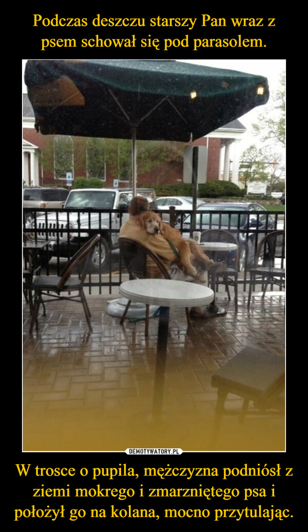 W trosce o pupila, mężczyzna podniósł z ziemi mokrego i zmarzniętego psa i położył go na kolana, mocno przytulając. –