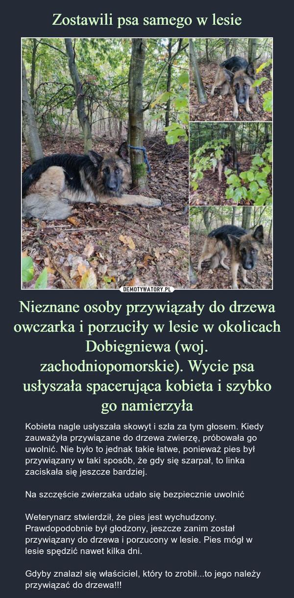 Nieznane osoby przywiązały do drzewa owczarka i porzuciły w lesie w okolicach Dobiegniewa (woj. zachodniopomorskie). Wycie psa usłyszała spacerująca kobieta i szybkogo namierzyła – Kobieta nagle usłyszała skowyt i szła za tym głosem. Kiedy zauważyła przywiązane do drzewa zwierzę, próbowała go uwolnić. Nie było to jednak takie łatwe, ponieważ pies był przywiązany w taki sposób, że gdy się szarpał, to linka zaciskała się jeszcze bardziej.Na szczęście zwierzaka udało się bezpiecznie uwolnićWeterynarz stwierdził, że pies jest wychudzony. Prawdopodobnie był głodzony, jeszcze zanim został przywiązany do drzewa i porzucony w lesie. Pies mógł w lesie spędzić nawet kilka dni.Gdyby znalazł się właściciel, który to zrobił...to jego należy przywiązać do drzewa!!!